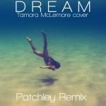Priscilla Ahn – Dream (Tamora McLemore cover) (Patchley Remix)