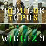 Moduloktopus – Wiggizm