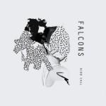 Falcons – Falcon Eye (reprise)