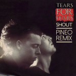Tears For Fears – Shout (PINEO Remix)