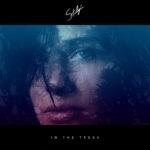 Stalgia – In The Trees